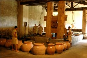 le chai romain et avec le pressoir de Caton