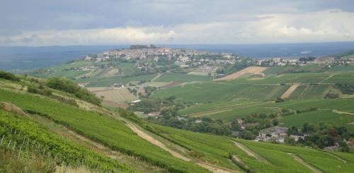les vins blancs du  u00ab c u0153ur de france