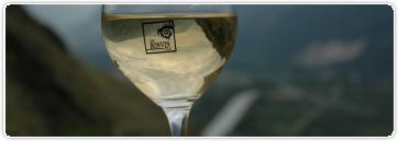 Leçon n°44: Le vieillissement du vin en bouteilles (3/4)