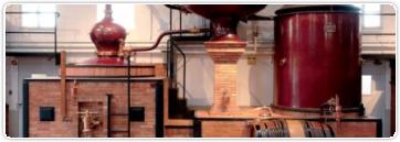 Cognac et Armagnac : si proches, si loin