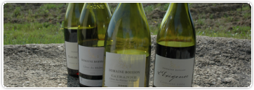 Peut-on décrire un vin par des mots ?