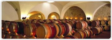 Leçon n°38: L'élevage des vins (1/4)