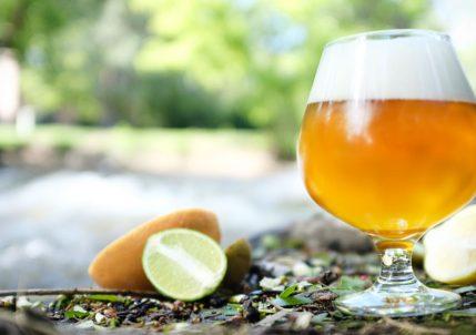 Meilleures bières pour l'été